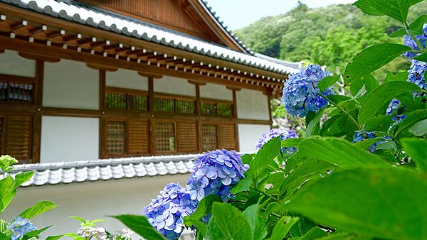 圓覺寺.png