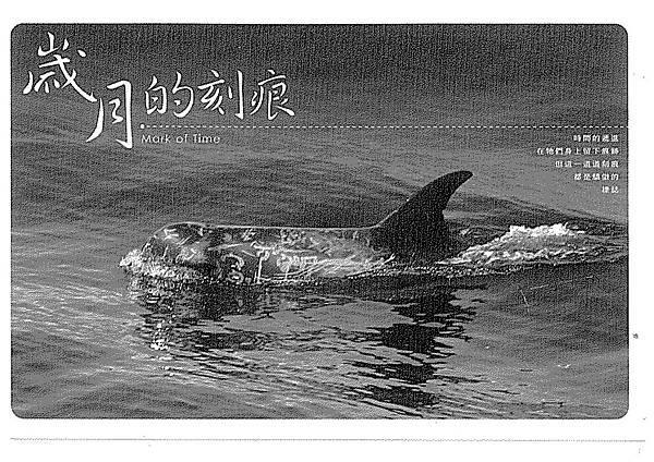 100W4207沈詠霖 (1).jpg