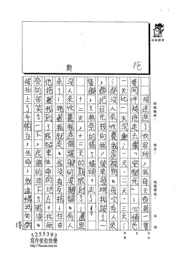 103TSW210徐梓薰 (3)