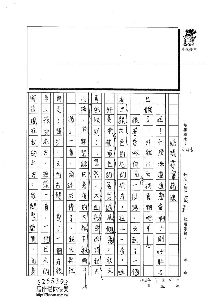 103W6203梁宸葦 (3)