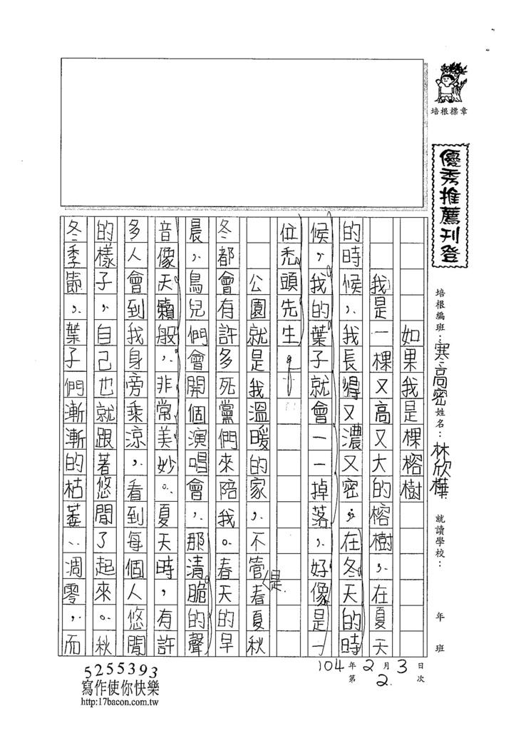 104WH02林欣樺 (1)