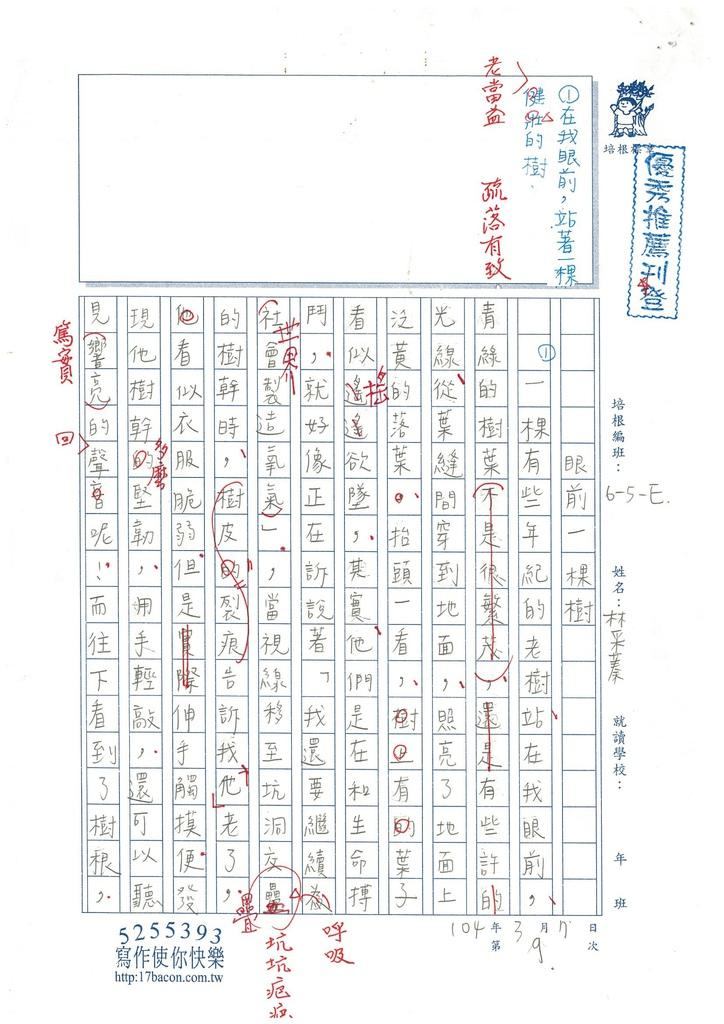103WE310林采蓁  (1)