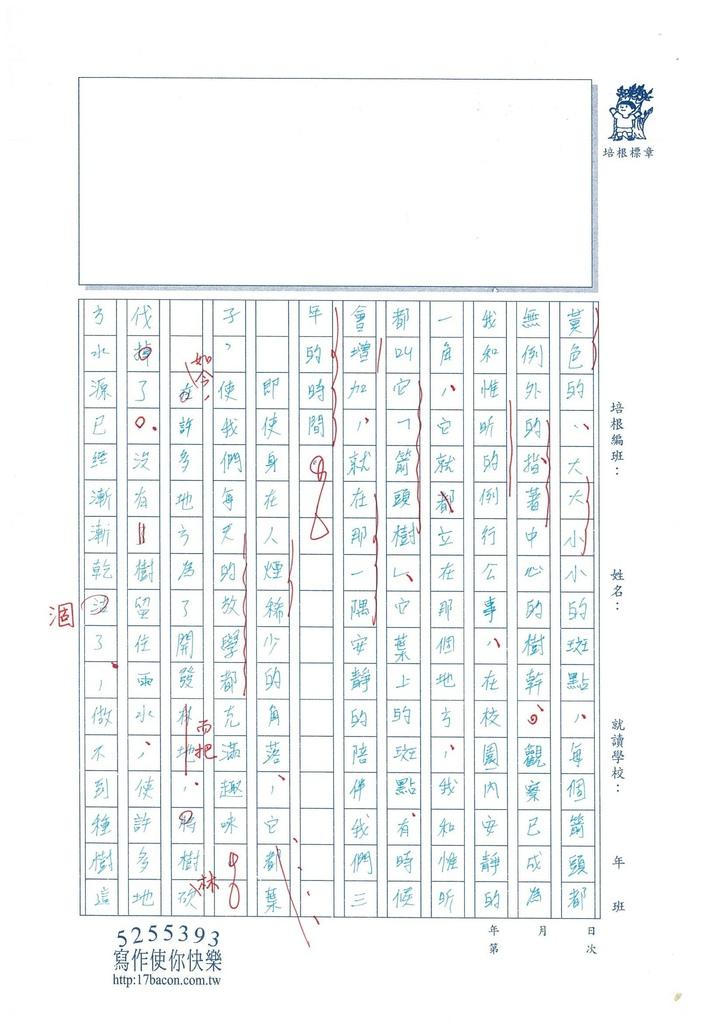103WE310陳彤縈 (4)