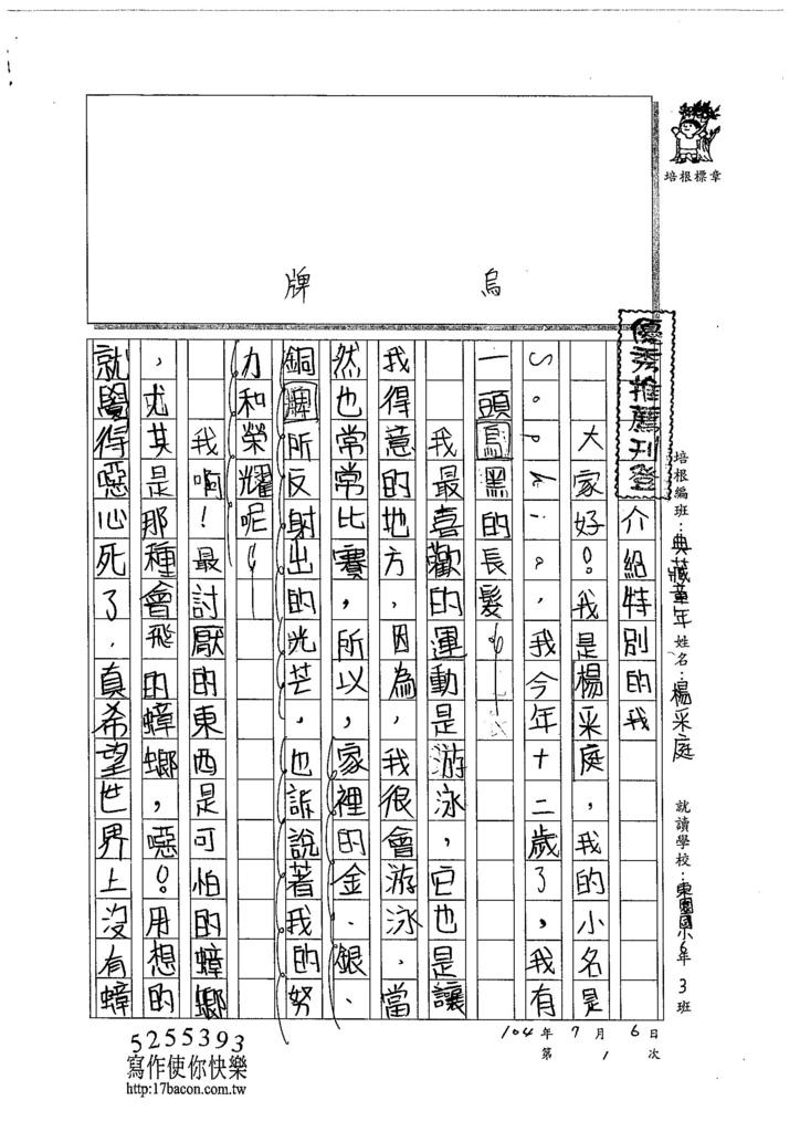 104CW01楊采庭 (1)