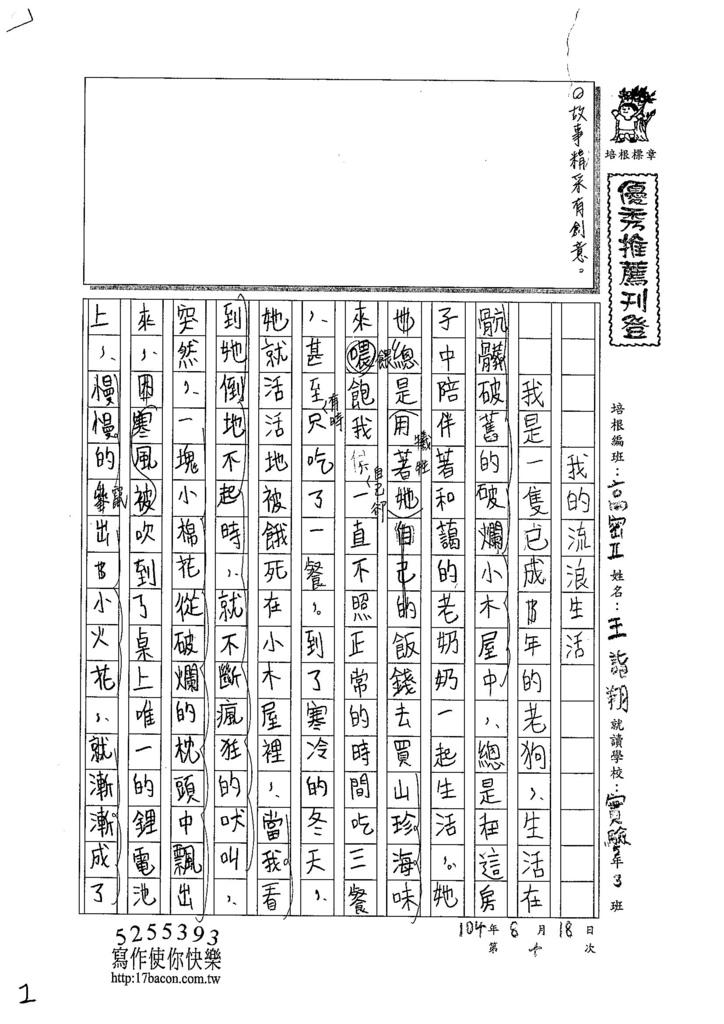 104TSW210王詣翔 (1)