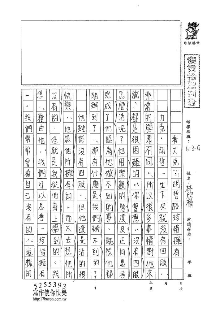 104WG207林欣樺 (1)