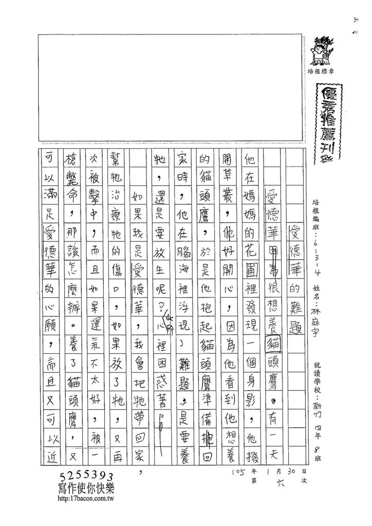 104W4306林庭宇 (1)