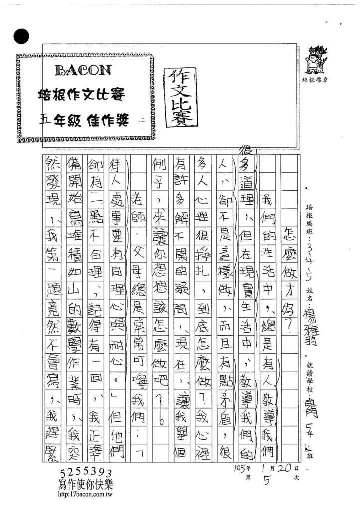 104W5305楊雅羽 (1)