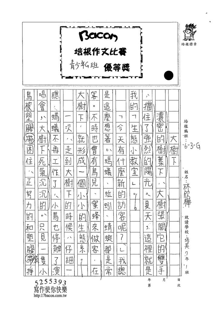 104WG305林欣樺 (1)