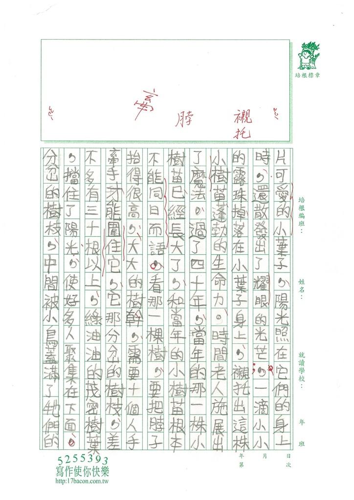 104W5308-9汪靖蓉 (3)
