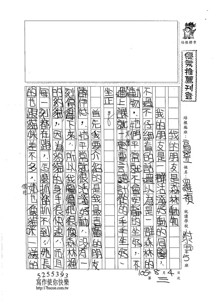 105暑TSW203 羅禎 (1)