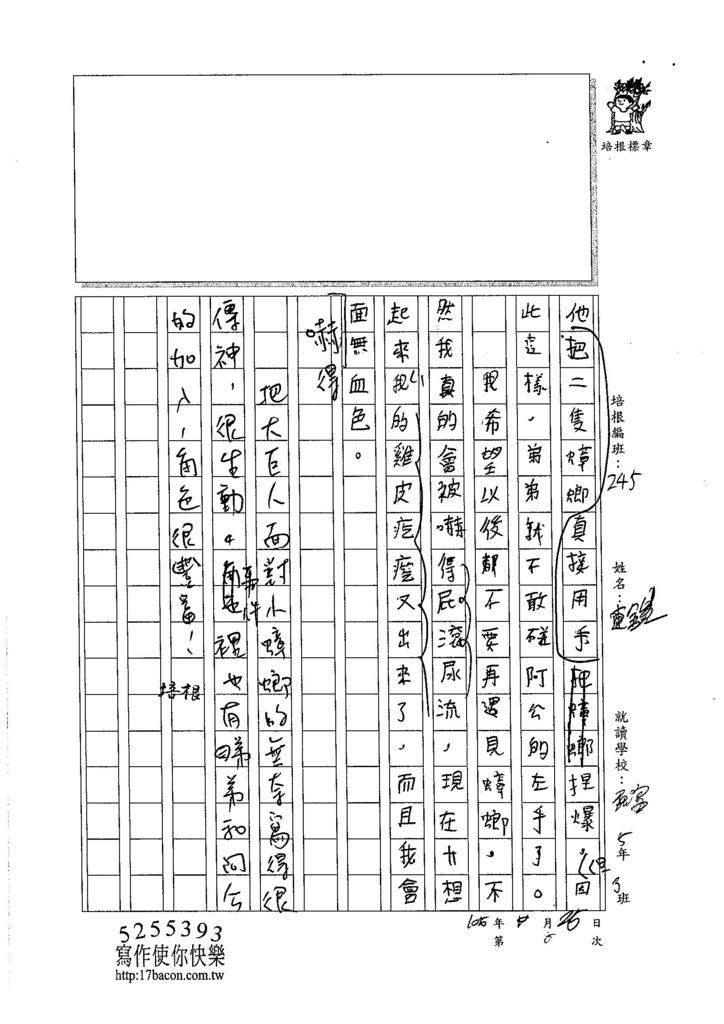 105W5206連鎧 (3)