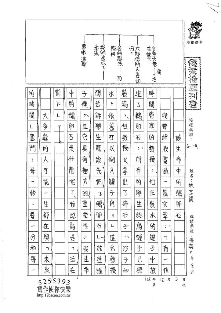 105WA209林芷韻 (1)