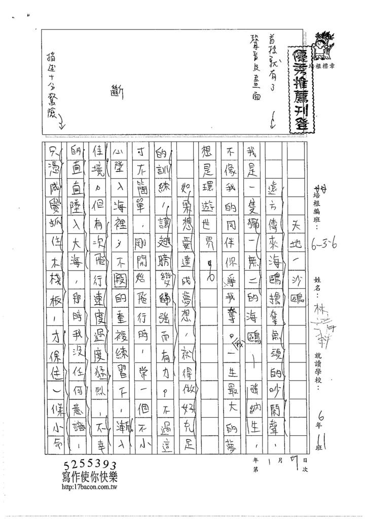 105W6303林靖軒 (1)