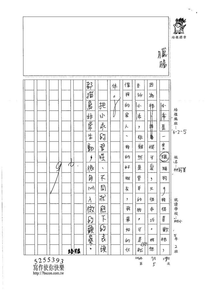 106W5105 林莉菁 (3)