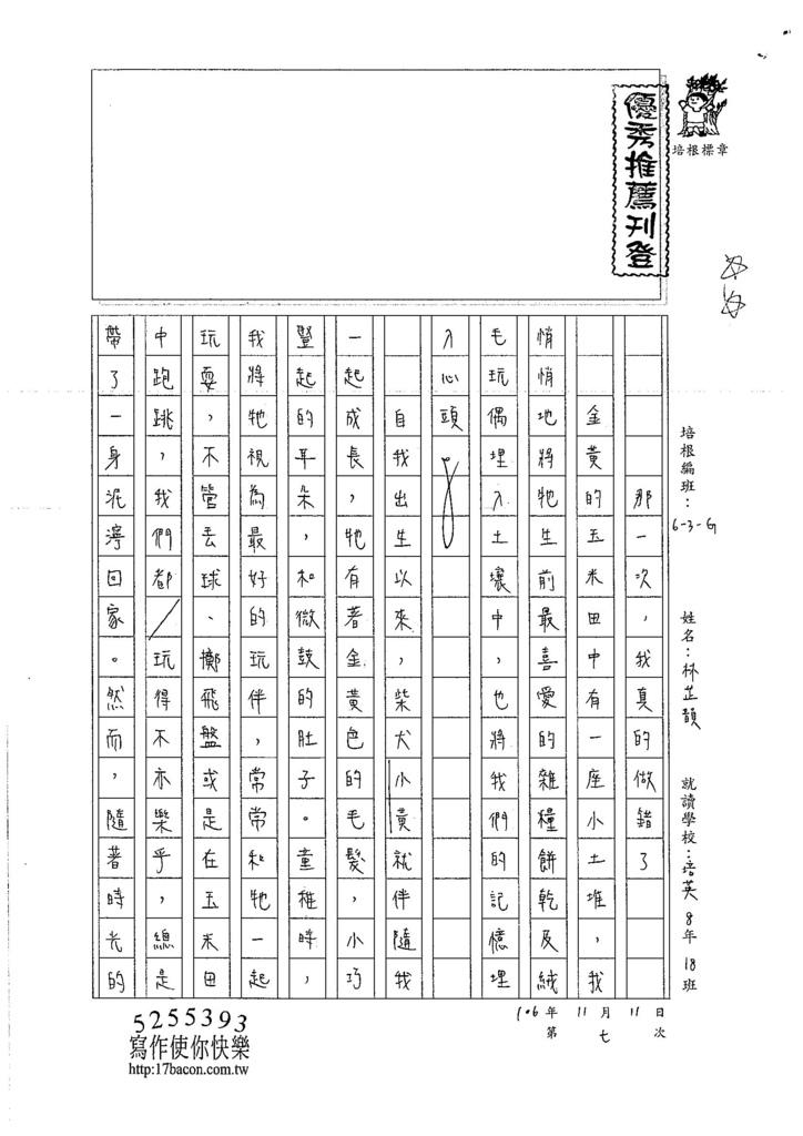106WG207 林芷韻 (1)