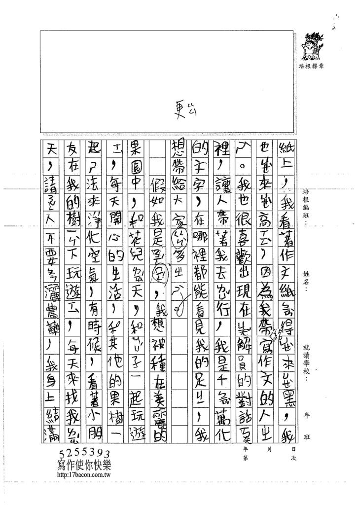 107WMA05陳子晴 (2)