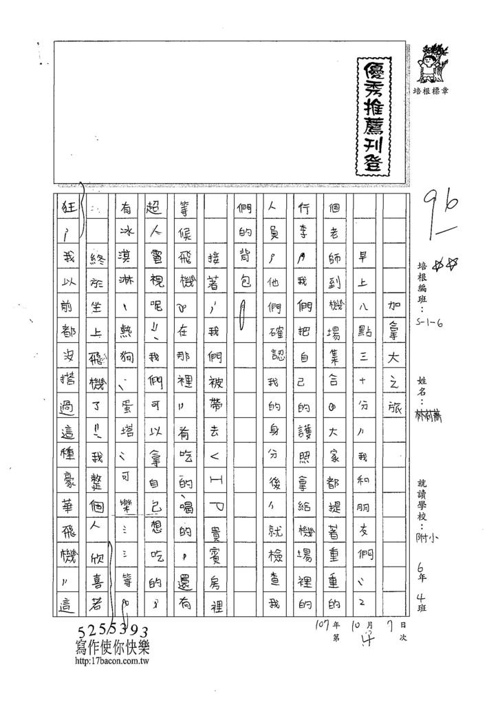 107W6204林莉菁 (1).jpg