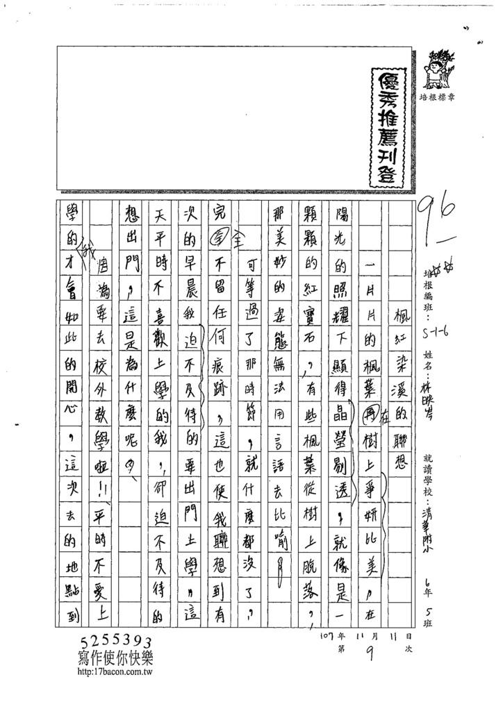 107W6209林映岑 (1).jpg