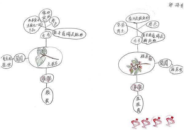 108RCW102郭詠晴 (4).jpg