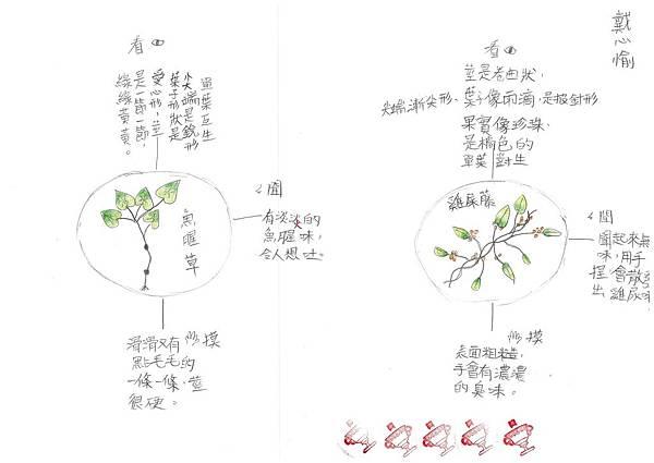 108RCW102戴心愉 (5).jpg