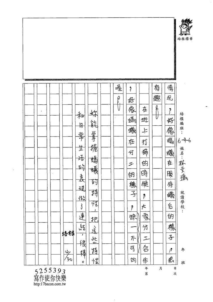 108W6406林文瑀 (3).jpg