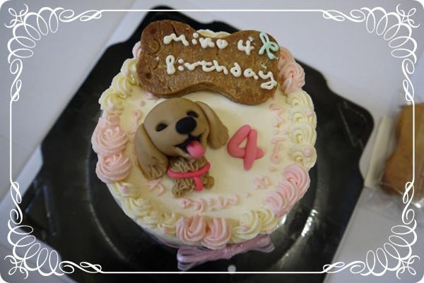 MIKO 4歲了~好快...