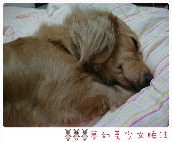 手枕在臉下睡~是有這麼夢幻嗎...