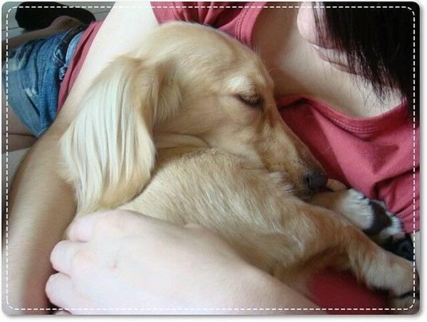 跟寶寶一樣讓你抱著睡