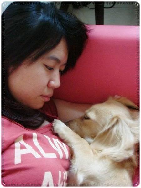 躺在懷裡睡覺,多可愛啊~