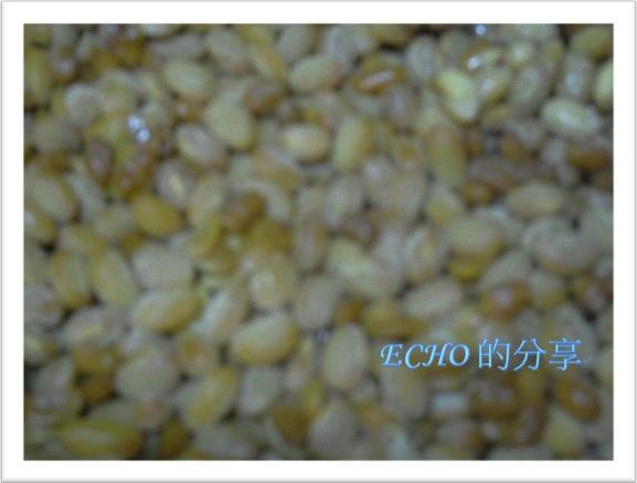 自製納豆做法-8