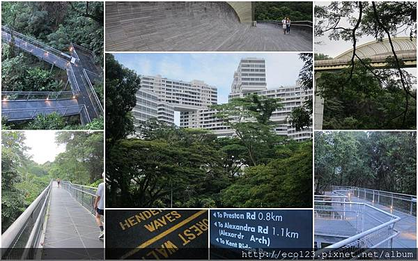 2014_01_03_11_Singapore15