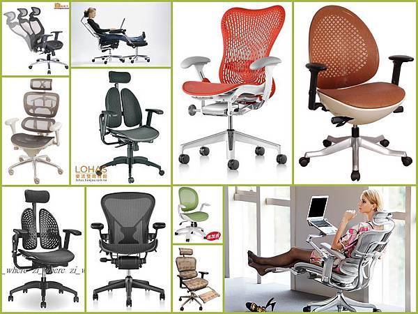 全網椅1.jpg