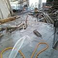 091214-一樓頂板養護3及拆側模10