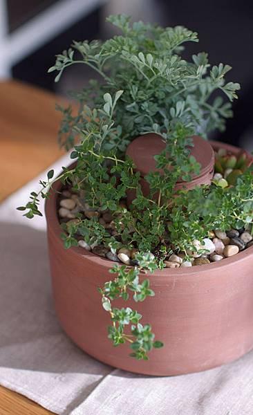 planter_right