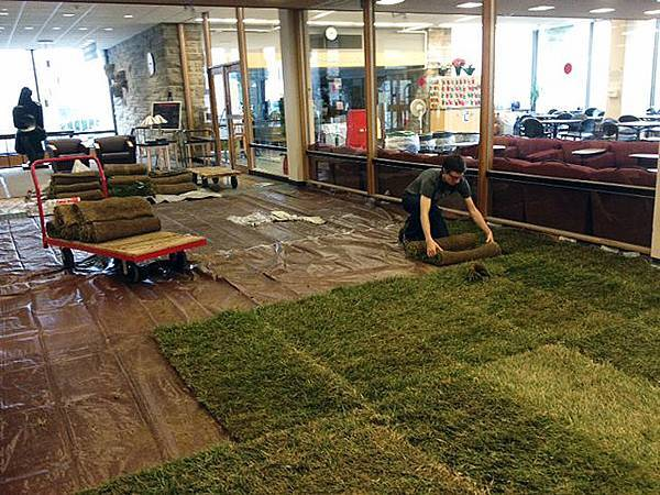 Cornell-Library-Grass3