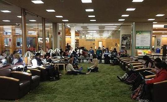 Cornell-Library-Grass6