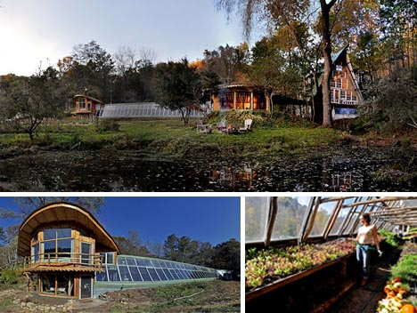 organic-natural-tree-home.jpg
