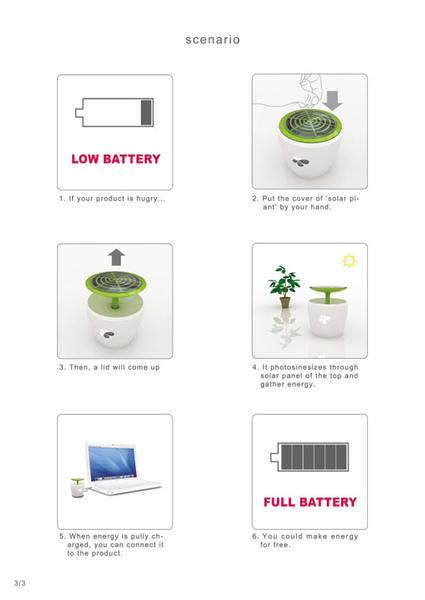 solar-plant-.jpg