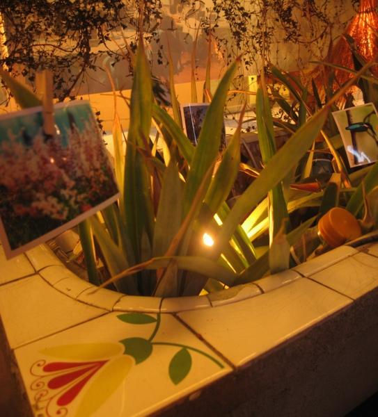 20101201 3 在地設計 這裡是鳳梨的產地 所以用鳳梨來結合生態營造展示.jpg
