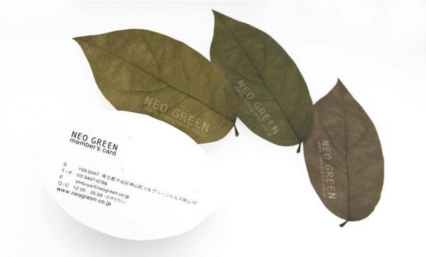 leafletter08.jpg