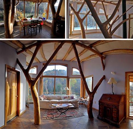 organic-modern-tree-house.jpg