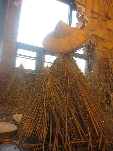 20101201 3  現在是秋收季節 水稻田也是模擬中正草創時期的狀態.JPG