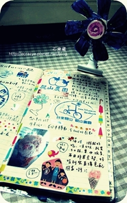 IMG_9311