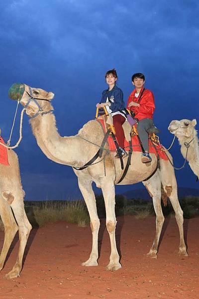Uluru Camel Tour 058-1024
