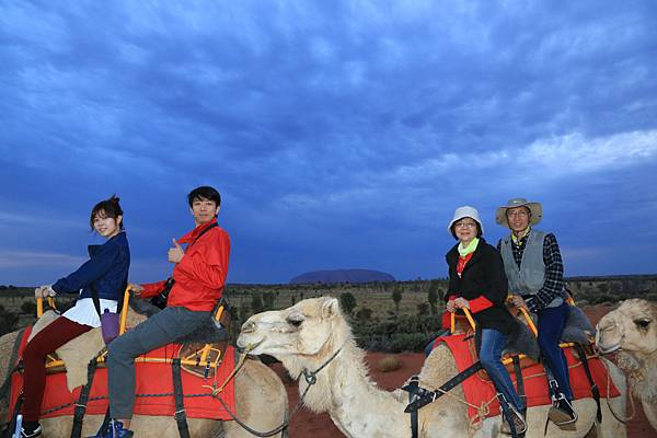 Uluru Camel Tour 106_3