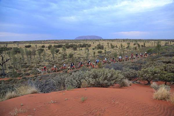 Uluru Camel Tour 123-1024