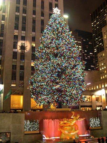 洛克斐勒的超大聖誕樹!!