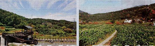 《李廷鈞和大家分享》台北市有130條登山步道,九成是私人土地!