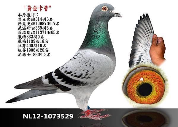 23-NL12-1073529